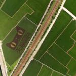 觀點投書:「天貓國際」插旗國內農產是福?是禍?
