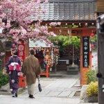 東京藝大奉行60年的「古京都旅行課」,這些古老地點看過的人都說想再多去幾次!