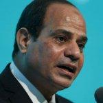 埃及總統塞西:我在帶領國家走向民主