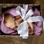 無論貧富貴賤,剛出生的寶寶都會收到這紙箱!一個讓爸媽大呼「政府好窩心」的德政