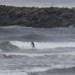 日本氣象廳:太平洋海水酸化越來越嚴重 衝擊海洋生態系統