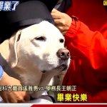 台科大導盲犬「畢業」 柯文哲將首頒榮譽市犬獎