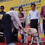 台北市有「榮譽市犬」了!柯文哲頒獎章給7隻退役導盲犬