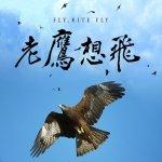 台灣第一部上院線的老鷹紀錄片《老鷹想飛》耗時23年風霜淬煉