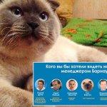 對政治徹底失望!俄國小鎮換市長 喵星人竟拿九成選票