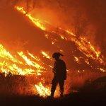 警笛太響損及聽力?全美4400名消防員怒告製造商