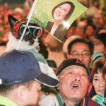 觀點投書:大魔王倒下後的台灣政治