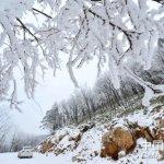 近30年最強寒流》江南恐有暴雪 上海氣溫可能跌破35年最低紀錄