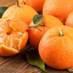 感冒咳嗽時,不要吃橘子?聽聽中醫師的說法….