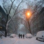 積雪近1公尺,機場停擺》暴風雪肆虐美國東部 11個州進入緊急狀態