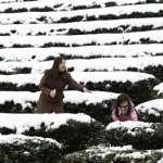 漢字偵查課》穿越三千年的雪