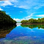 來帛琉吧!4小時直飛即將消失的海洋天堂…享受溫暖陽光$18800起,春節連假正是時候
