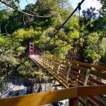 「真正」全台最長的吊橋在哪?精選全台6個值得你專程一訪的吊橋美景!