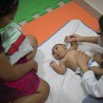 接種疫苗會導致小頭症?WHO破除茲卡病毒四大謠言