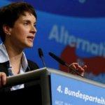 德國民粹政客:警察「應向移民開槍」