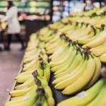 研發高附加價值商品 義美買60公噸香蕉救農業