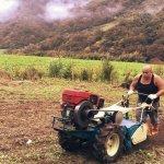 絕跡40年台灣之光「銀珠香米」復活!高學歷的他返鄉務農,只為父親最大遺願…