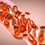 模擬動脈血液運行要用多少處理器?超過一百六十萬個!