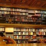 書架是祕密的花園:《東京閱讀男女》選摘(1)