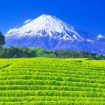 帶著相機去旅遊!專業攝影師精選6處日本私房景點,快門一按就是絕美風景照