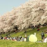 在日本工作究竟夢不夢幻?知道日本人1年休幾天假,你就不會說他們工作狂了