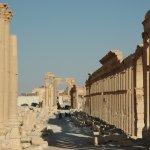 捷報!伊斯蘭國節節敗退 敘利亞軍隊奪回帕米拉古城