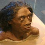 是「哈比人」!印尼古人種考古新發現 5萬年前就滅絕
