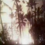 施放煙火引燃堆放煙火 印度寺廟陷入爆炸火海 102死280傷