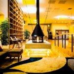 日本8間奇特主題咖啡店!文具、澡堂、床鋪、小鳥、星空…都在其中