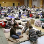 外交部:受困熊本災區國人38人全數接出 今晚安排班機返台