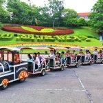 端午連假 台灣主題樂園觀光放輕鬆