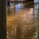 桃園機場變「水上」機場 二航廈停電、淹水 要去機場改走這!