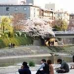 鴨川潛規則!遊京都鴨川沒做這件事,小心被其他路人當白目!
