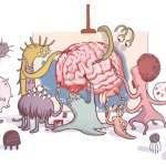 人體第2個大腦,你的情緒低落和憂鬱,都和它有著密切關聯…