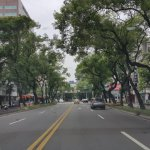 這條路記著台灣歷史,有日本殖民記憶和駐台美軍風花雪月…它還曾是我們的外交大道