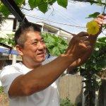 從菜園看見台南最美風景!大老闆下海教小學生種菜,從小開始學什麼叫良心食物