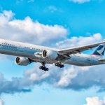 這家航空公司霸氣宣佈拒運魚翅,全球環保人士都叫好!