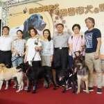 「搜救犬退休啦」消防局開放搜救犬寄養 讓救人的毛小孩有好歸宿