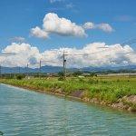 八田與一曾為寶島蓋出號稱「亞洲第一」的水利建設,讓臺灣稻米產量成長四倍