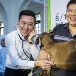 推廣生命教育,新竹市首推「小小獸醫夏令營」