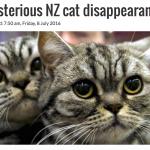 紐西蘭南島有盜貓怪客?提馬魯市50多隻家貓無故失蹤