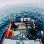 能開民宿賺錢,為什麼要學釣魚?13種即將失傳捕魚法,是台灣正在失去的記憶…