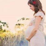 抵制華人孕婦「旅遊生子」,加拿大人連署提案過門檻