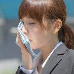 分享你的涼爽!台灣日本抗熱對策,中心思想都是「它」