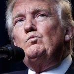 美國總統大選》輪到川普要被揭密爆料?維基解密:鼓勵大家蒐集川普報稅紀錄