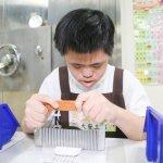 進用身障者未足額 台灣高院公家最多、長榮航太、星展銀行企業居首
