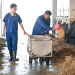 為何牛奶一定要「加料」才好喝?年輕獸醫自創品牌,給台灣人最安心的鮮乳!