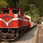 為阿里山森鐵與台鐵鬧不合?林務局反駁:媒體報導不符事實