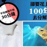 台灣成為亞洲第一 環保署:2020年起禁用塑膠柔珠產品
