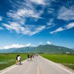 中國遊客不來台灣,都是蔡英文害的?呂秋遠痛批,旅遊業者沒搞懂真正的問題…